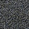 MIYUKI Round Rocailles BeadsX-SEED-G009-RR2002-2