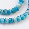 Natural Apatite Beads Strands G-F568-097-C-3