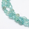 Natural Apatite Beads Strands G-P406-50-3