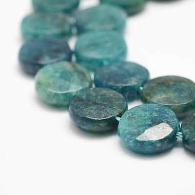 Natural Apatite Beads Strands G-F476-04-12x4mm-1