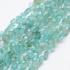 Natural Apatite Beads Strands G-P406-50-1