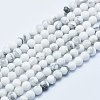 Natural Howlite Beads Strands X-G-P353-01-4mm-1