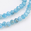 Natural Apatite Beads Strands G-F568-077-4mm-3